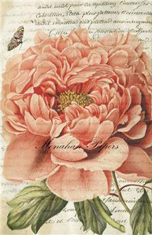 Botanical 38 - BOT38