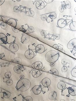 Bicycles - KWSPS675