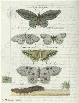 Butterflies - X320