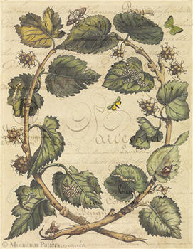 Butterfly Leaves - X379
