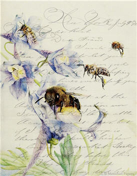 Bees - X388