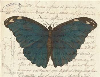 Blue Butterfly - X487