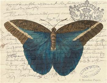 Indigo Butterfly - X488