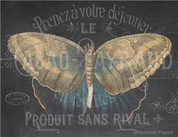 CACAO Chalkboard Butterfly - X493