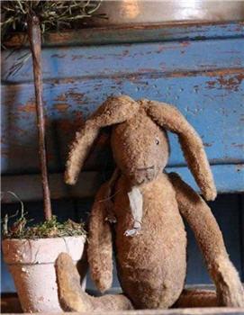 Mr. Thyme Bunny - ACS101-