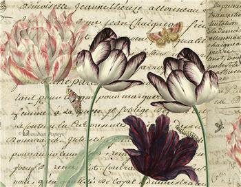 Botanical 47 - BOT47