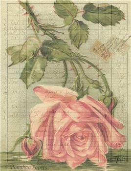 Botanical 49 - BOT49