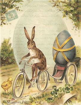 Bunny Bicycle - E89