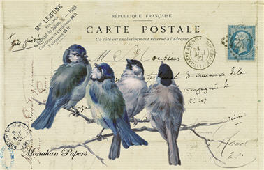 4 Blue Birds - R1