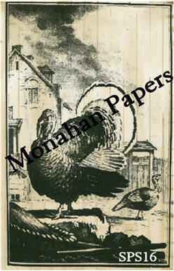 The Turkey Paper Sheet-paper, aged, sheet, turkey