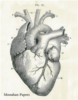 Have a HEART - SPS1019