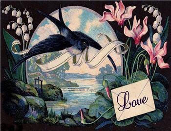 Love - V49