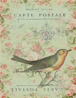 Carte Postale Single Bird - X107