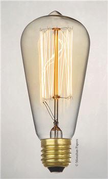 Vintage Style Bulb - 60 Watt 120 Volts