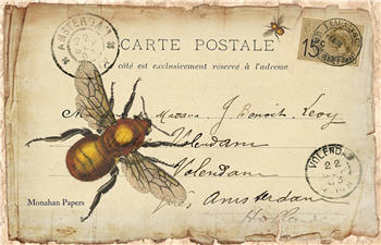 La Carte Bee - SPS677