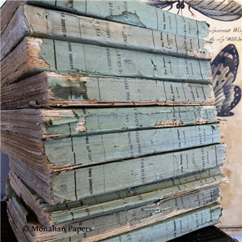 Blue Green Deckled Edge Books