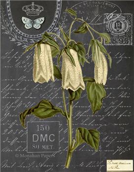 Botanical 202 - BOT202