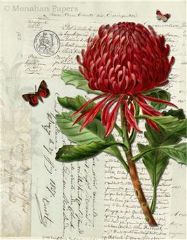 Botanical - BOT91