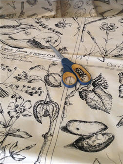 Bird & Mouse Fabric - FABBIRDMOUSE