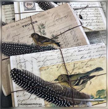 Assorted Bird Paper Stationery Packs