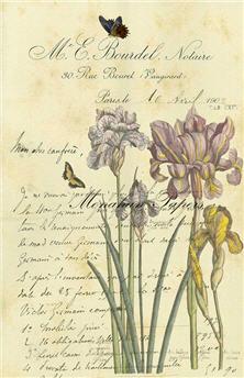 Botanical 36 - BOT36