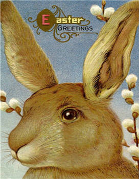 Easter Greetings Pussy Willow Bunny card - E50