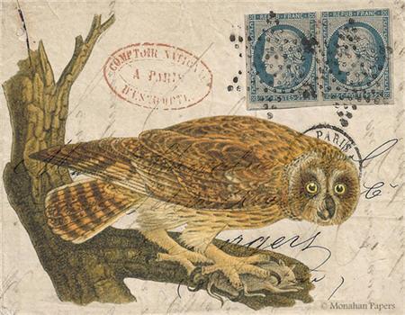 Hunter Owl - H7