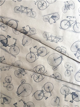 Bicycles - KWSPS675
