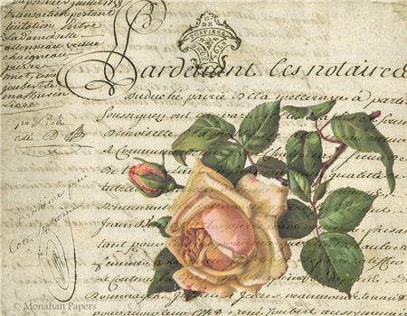 The Pink Rose and Bud - SPS359