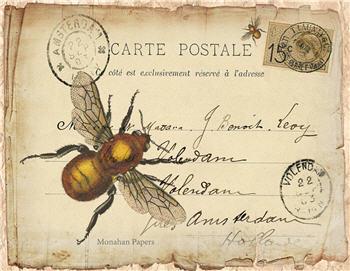 La Carte Bee - SPS677