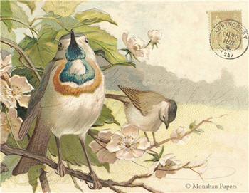 Blue Bearded Bird - SPS994