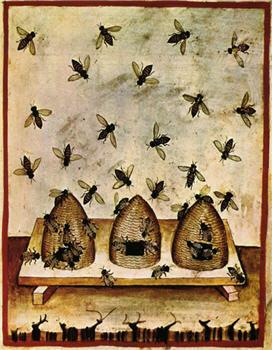 Beehives in Burgundy - X45