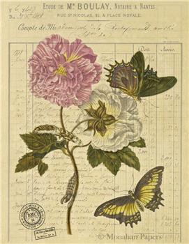 Peonies & Butterflies - X504