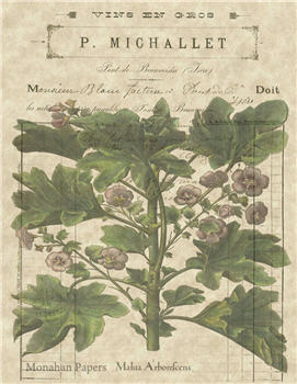 Botanical 11 - BOT11