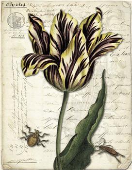Botanical 121 - BOT121