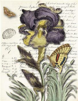 Botanical 123 - BOT123