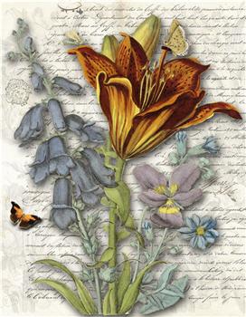 Botanical 124 - BOT124