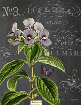 Botanical 201 - BOT201