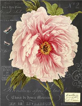 Botanical 203 - BOT203