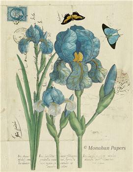 Botanical 35 - BOT35