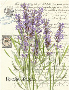 Botanical 41 - BOT41