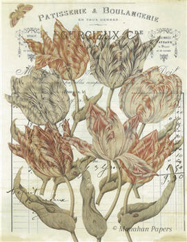 Botanical 48 - BOT48