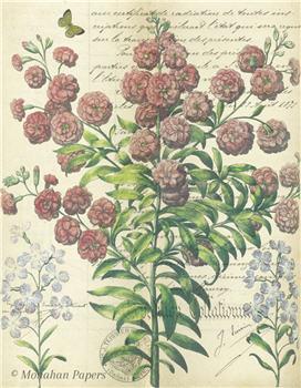 Botanical 51 - BOT51