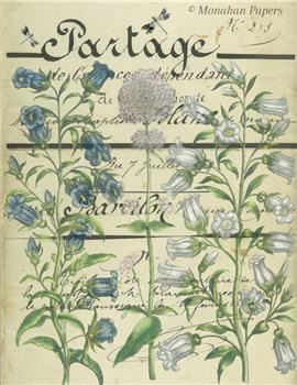 Botanical 52 - BOT52