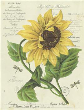 Botanical 54 - BOT54