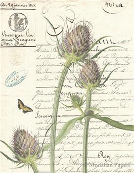 Botanical 59 - BOT59