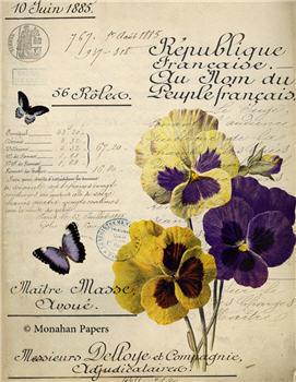 Botanical 64 - BOT64
