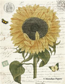 Botanical 65 - BOT65