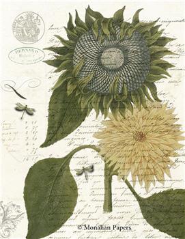 Botanical 66 - BOT66