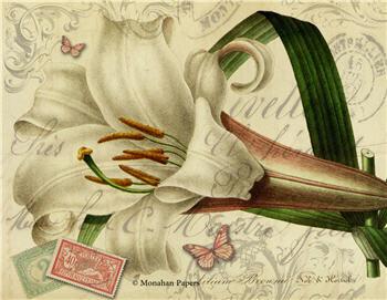 Botanical 70 - BOT70